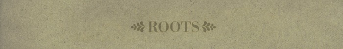 N roots banner