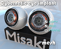 Cybernetic eyes implant