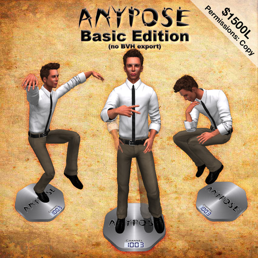 AnyPose Basic Pose Stand
