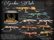 11. *HEXtraordinary* Flame Gecko Companion