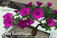 [ Organica ] Azalea Bonsai 1 (Magenta)