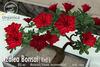 [ Organica ] Azalea Bonsai 1 (Red)