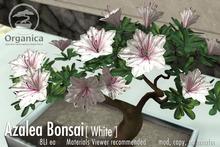 [ Organica ] Azalea Bonsai 1 (White)