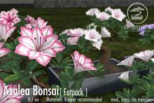 [ Organica ] Azalea Bonsai 1 (Fatpack)