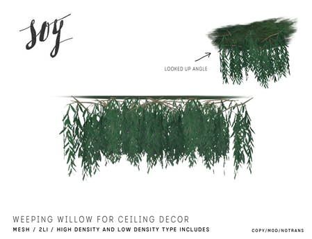 Soy. Weeping Willow for Ceiling decor