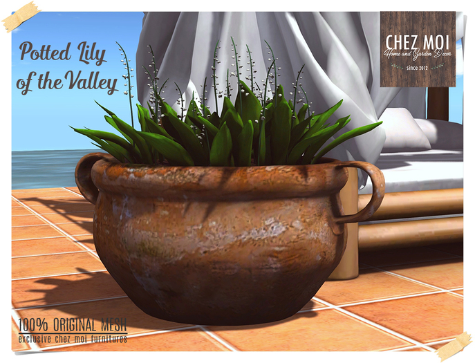 Potted Lilly of the Valley ♥ CHEZ MOI