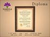 Thistle Homes - Diploma Decorating Arts - original mesh