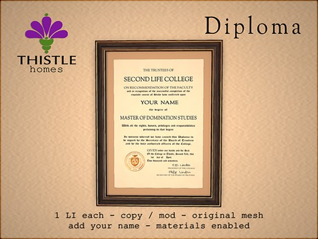 Thistle Homes - Diploma Domination Studies - original mesh