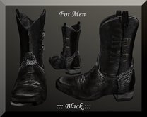 ::: Shelly Laufer Western Cowboy Boots/Black [For Men] :::