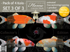 Tlc koi collector edition 3 of 3