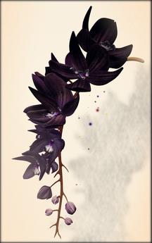 *LODE* Head Accessory - Orchkakis [black_violet]