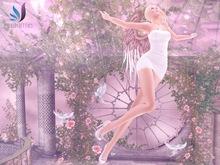 The angel's flight