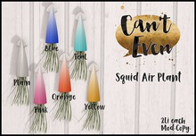 Can't Even - Squid Air Plant (Teal)