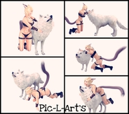 .Wolf...poses...Pic-L-Art's