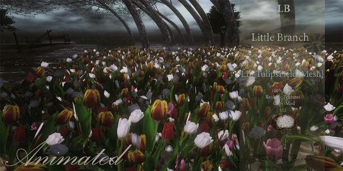 Tulip Field Animated
