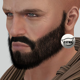 {Full Thick Beard IV} Fat Pack