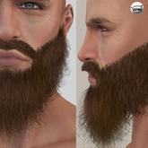 {Brown Thick Beard V}