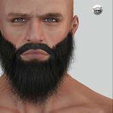 {{Black Thick Beard V}}
