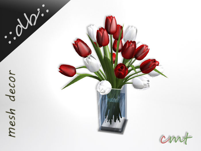 ::db:: Tulips Bouquet in Water - Red White