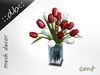 Tulips bouquet in water   red white