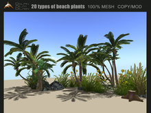 [Dolphin Design] 20  High quality  beach plants