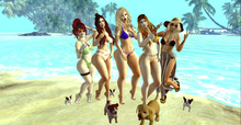 ++ Vetro Poses - Enjoying summer with my friends ++