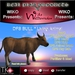 WIKO presents DFS BULL * Living Animal * Produce: Fertilizer & Meat