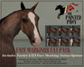 The Painted Pony ~ Face Markings Fat Pack for *WH* Riding horse