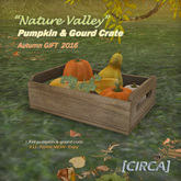 "[CIRCA] - ""Nature Valley"" - Pumpkin & Gourd Crate GIFT '16"