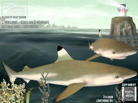 Shark, lighthouse