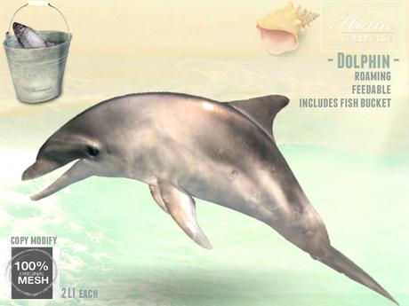 Dolphin, feedable