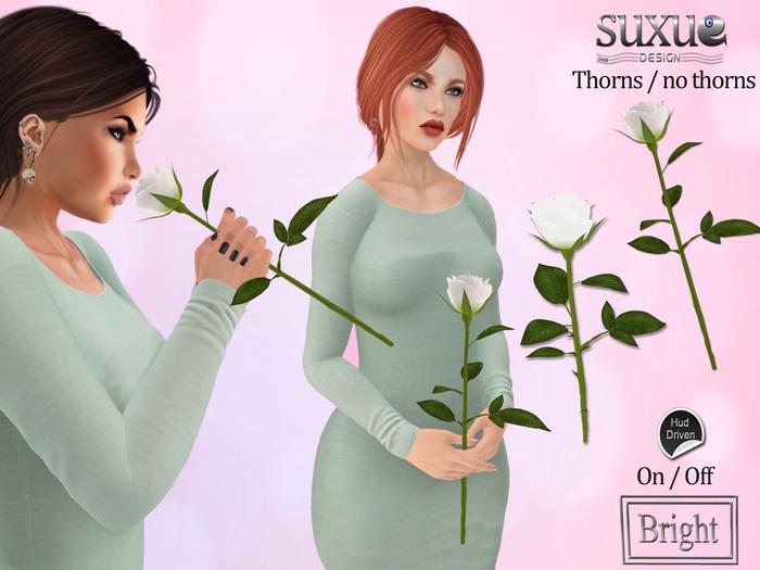 [SuXue Mesh] V2 Rose 3 AO Smelling Holding R Hand Thorny Thornless Resizable Transfer White