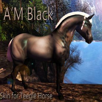 Teegle Skin A'M Black