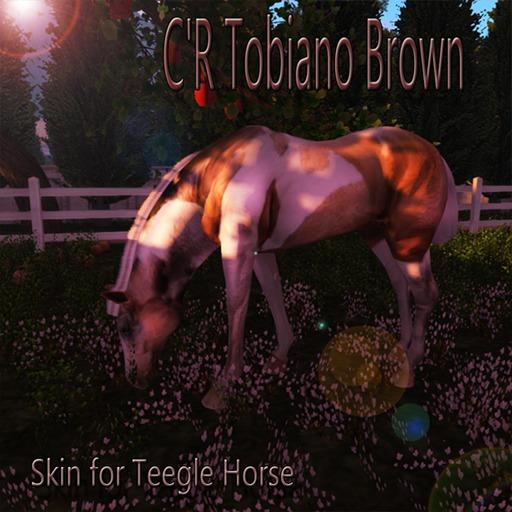 Teegle Skin C'R Tobiano Brown