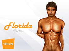 Florida Avatar Yellow