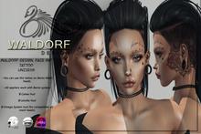 Waldorf Design. Face Ink Tattoo -BENTO-