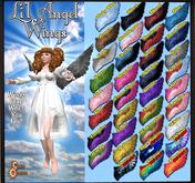 Curio Obscura - Li'l Angel Wings Parrot (BOXED) RARE