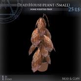 (Box) Dead House plant (Small)