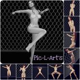 Mon grillage...10 poses...Pic-L-Art's & Le Cha'Noir