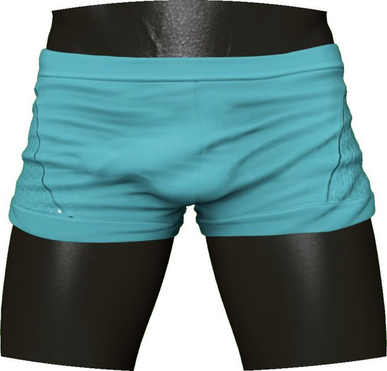 RIOT / Moby Swim Shorts - Glacier | Belleza / Slink / Signature / Adam