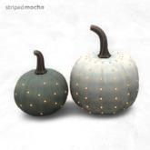 PROMO striped mocha - lighting pumpkins
