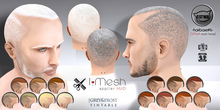 [i.mesh] - Hairbase#6 GREY&FROST/tint. (hud) - CATWA applier