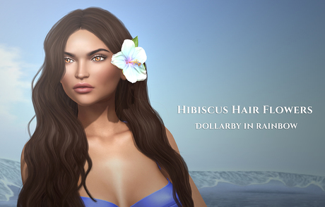 Cazimi: Hibiscus Hair Flowers - Rainbow 1L