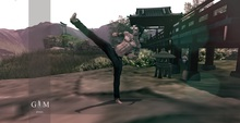 +gemposes+ - Monk 2 - [ADD-HUD] -