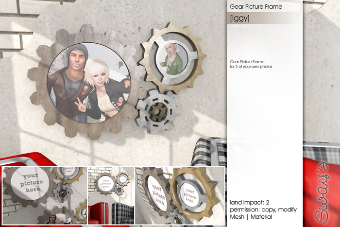 Sway's [Iggy] Gear Picture Frame