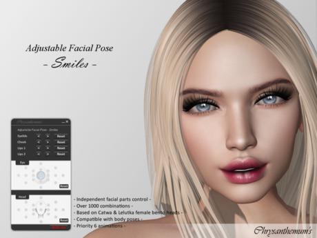 Bento Adjustable Facial Pose - Smiles