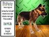 TWI Wolf - Fallout Dogmeat Applier
