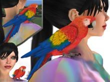parrot mesh