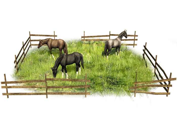 Grass field with horses - Old World - Medieval garden