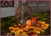Z.O.E. Fall Harvest